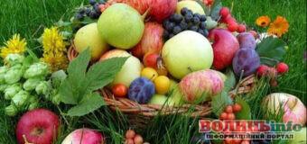 Яблучний Спас: що святять в церкві та у чому суть цього свята?