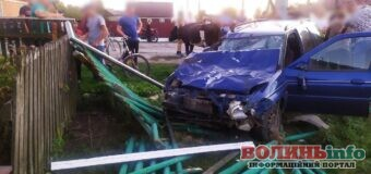 П'яний водій збив шістьох корів: 2 тварини загинуло