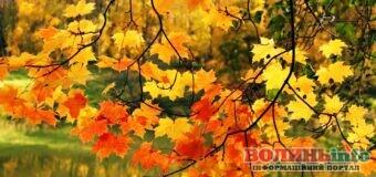 23 вересня – яке сьогодні свято? Чим особливий день? Кого вітати з Днем ангела?