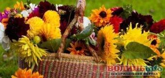15 вересня – яке сьогодні свято? Чим особливий день? Кого вітати з Днем ангела?