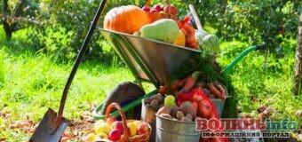 Місячний посівний календар садівника-городника: жовтень 2021