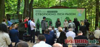 Держлісагентство розробило план по висадці 1 мільярду дерев за 3 роки