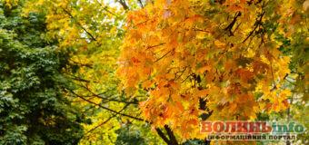 6 жовтня – яке сьогодні свято? Чим особливий день? Кого вітати з Днем ангела?